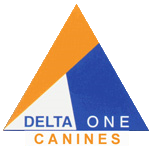 Deltaone Canines - Dog training in the West Midlands, Coventry areas, pet dog training and security